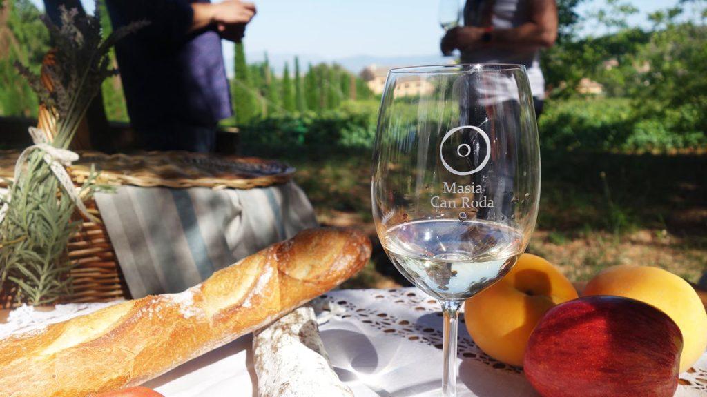 Desyuno entre viñedos - Celler Can Roda