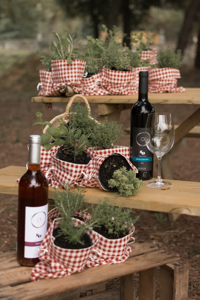 Maridajes plantas y vino can roda - Celler Can Roda