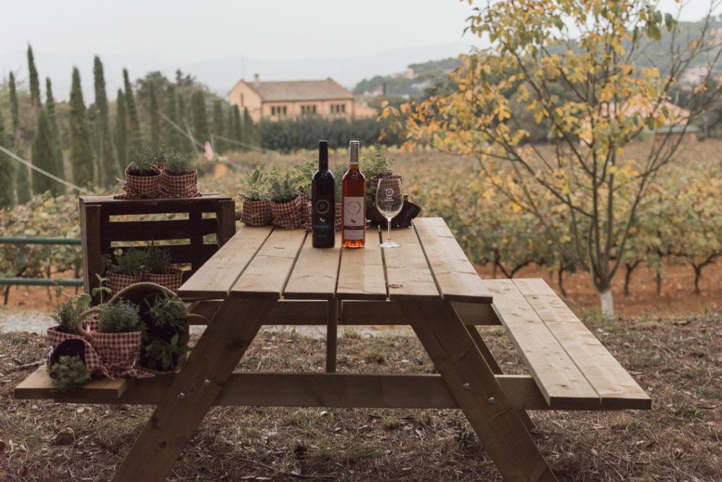 Maridajes vino con plantas - Celler Can Roda