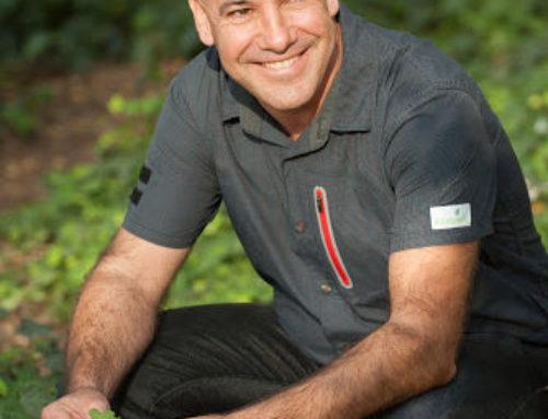 Entrevista a Evarist March, experto en plantas comestibles