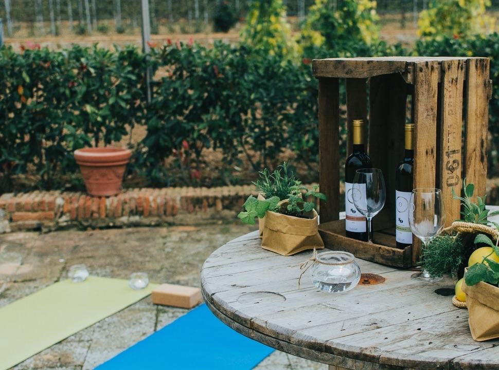 yoga vinedos empresa - celler can roda