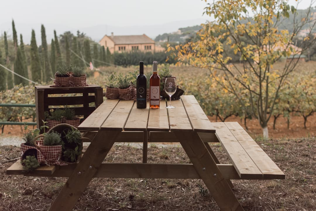 Can Roda picnic entre vinyes